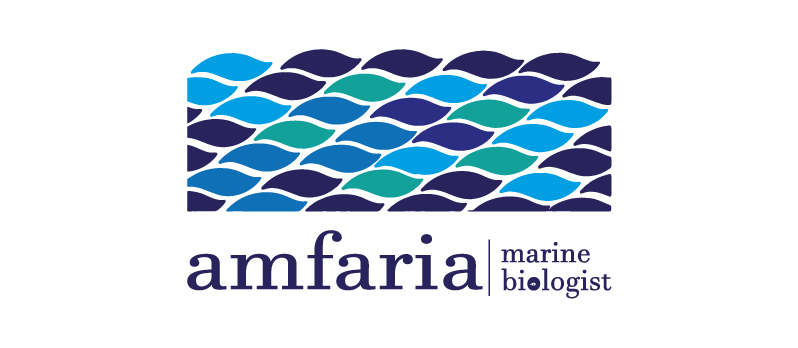 1_logo_principal